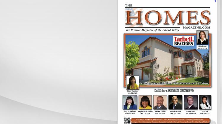 thehomesThe Homes Magazine 22-6